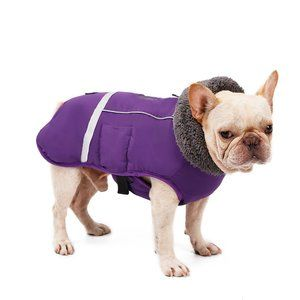 DogLemi Warm Dog Jacket in Purple - Size Medium